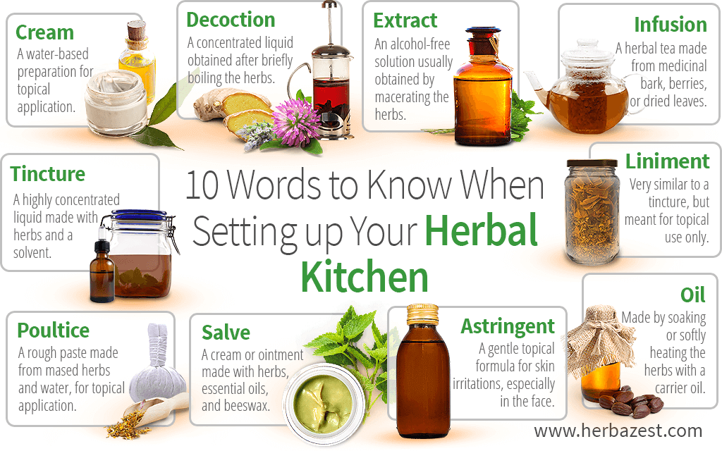 10 Words to Know When Setting up Your Herbal Kitchen