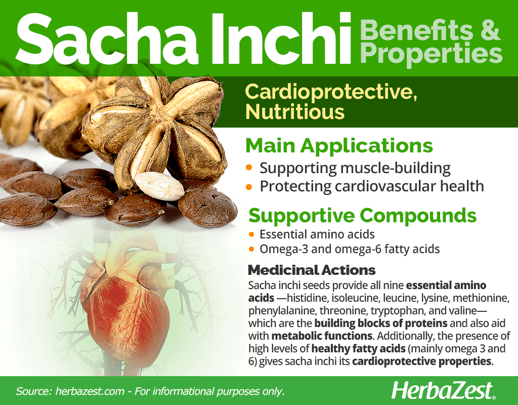 Sacha Inchi Benefits & Properties