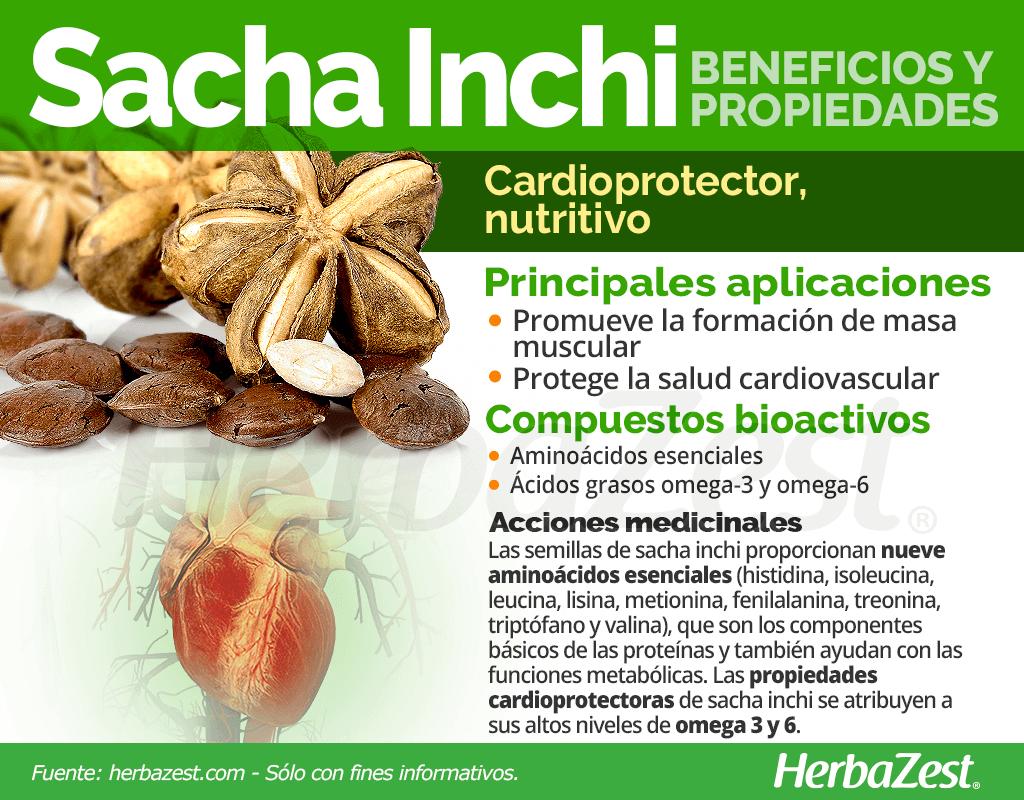 Beneficios y propiedades del sacha inchi