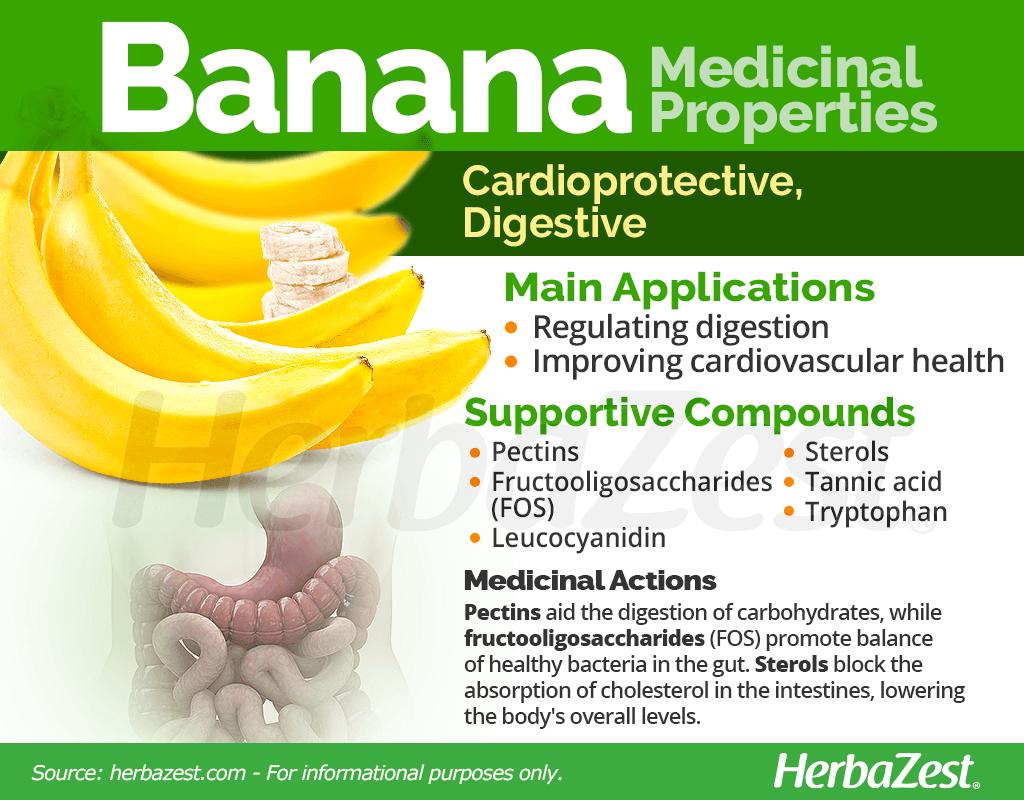 Banana Medicinal Properties