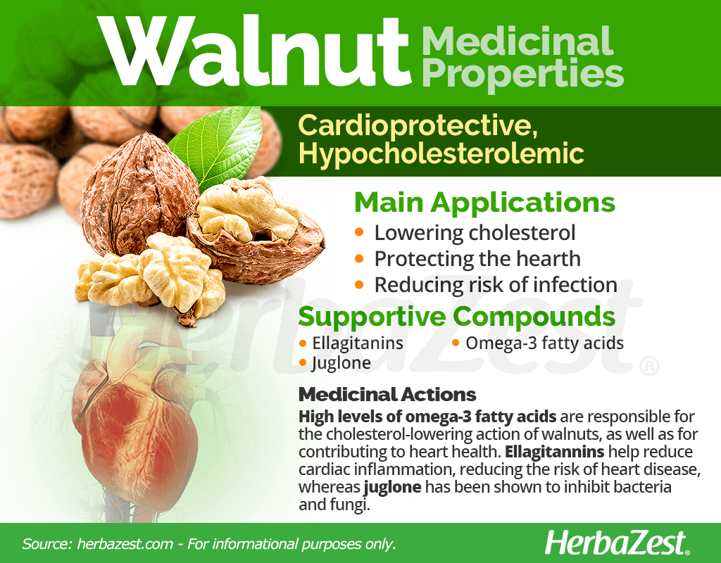 Walnut Medicinal Properties