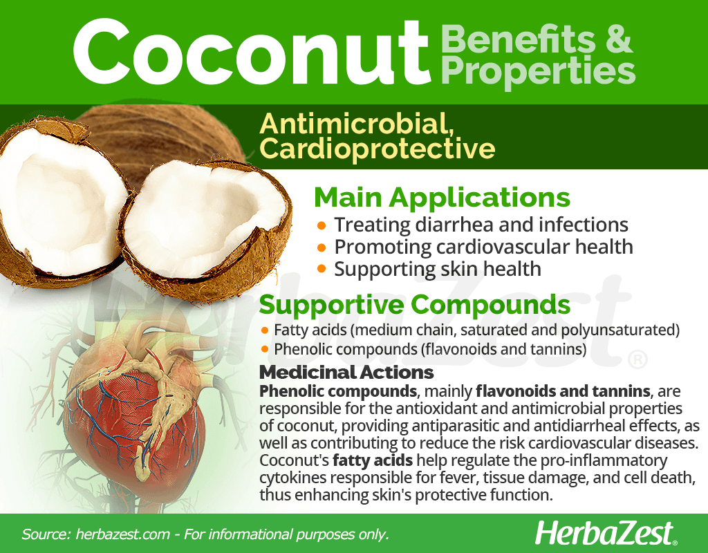 Coconut Benefits & Properties