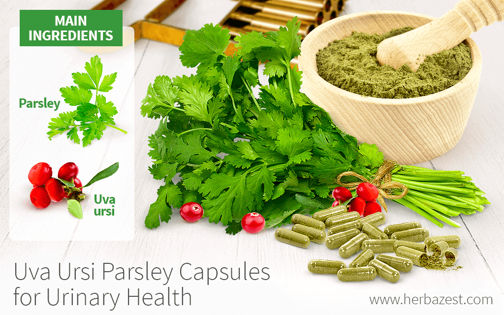 Uva ursi Parsley Capsules for Urinary Health