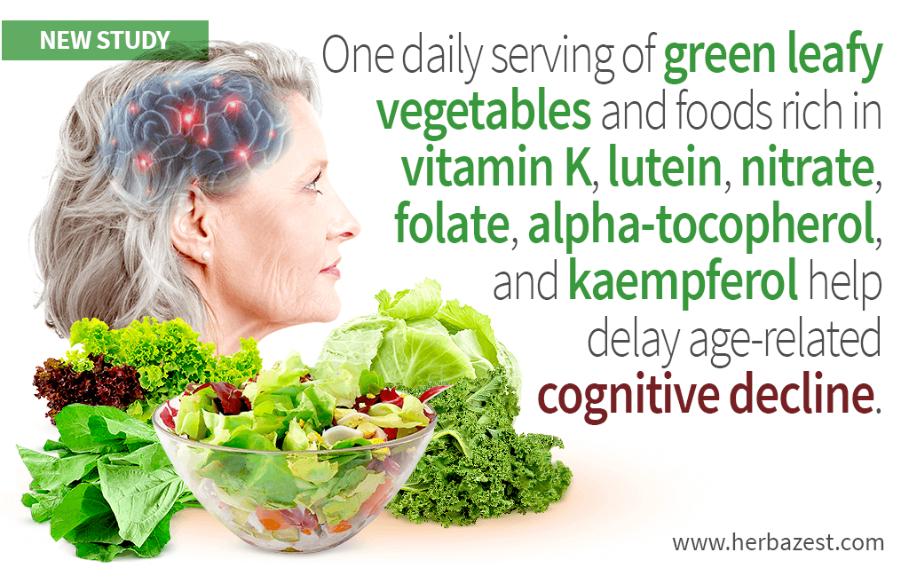 Leafy Greens' Nutrients Hold Back Cognitive Decline, Study Suggests