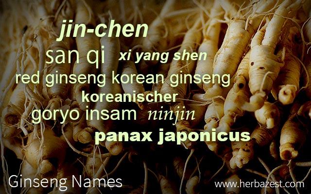 Ginseng Names