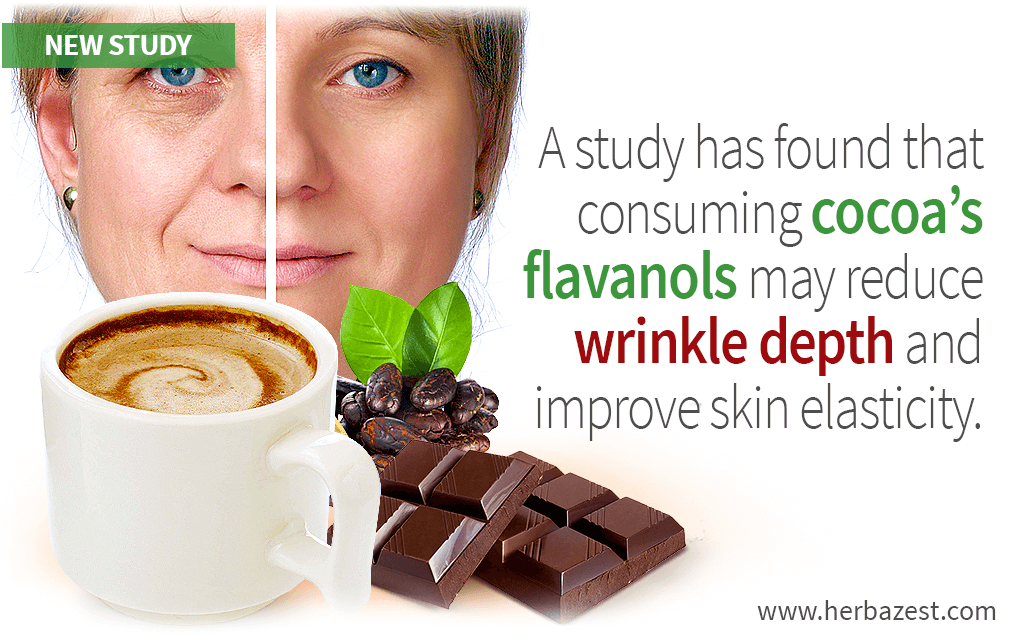 Facial Wrinkles and Elasticity Improved by Cocoa in Photo-Aged Women