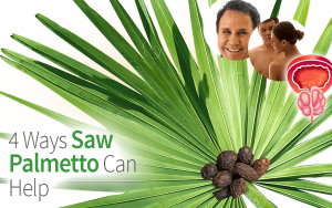 4 Ways Saw Palmetto Can Help