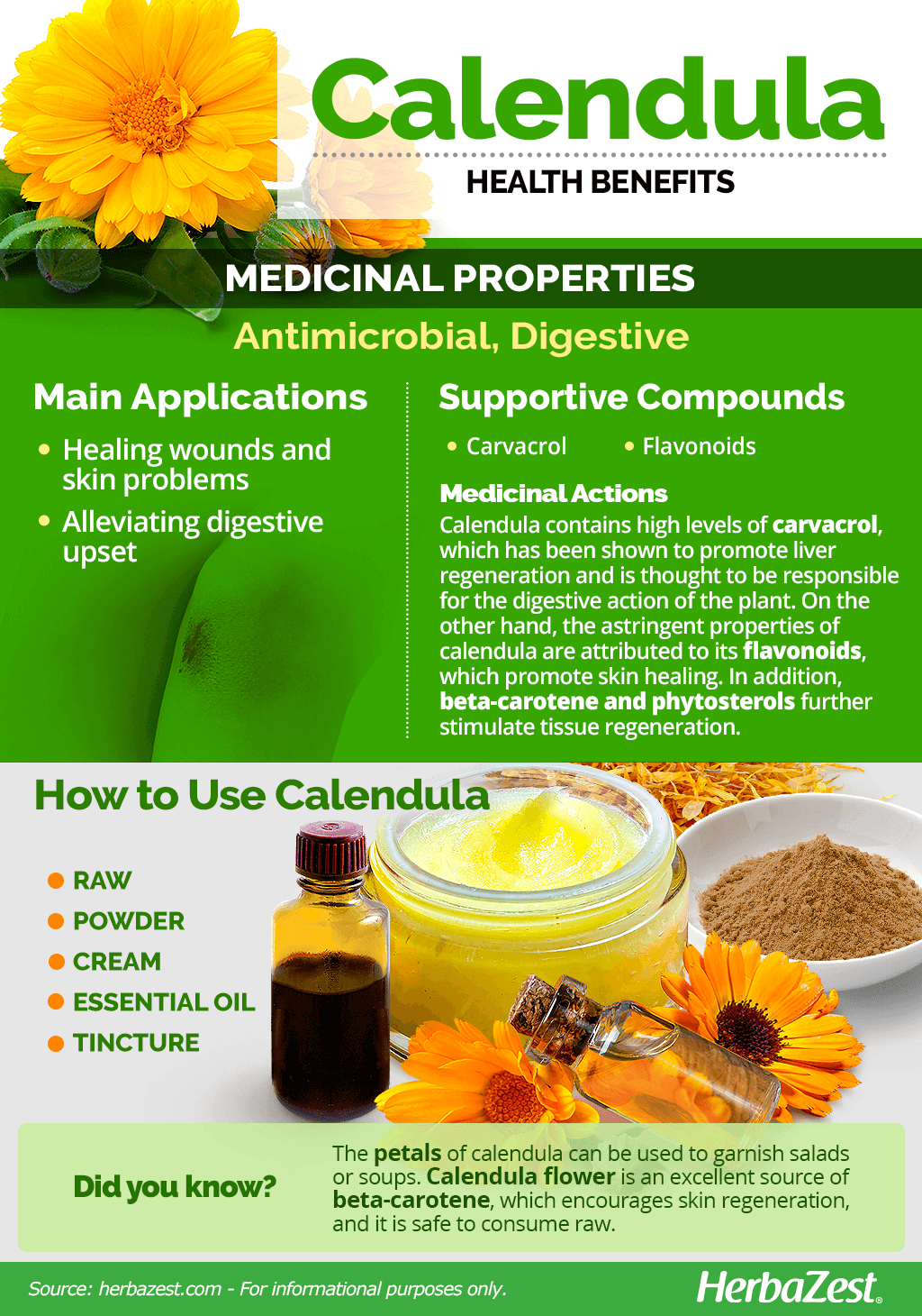 All About Calendula