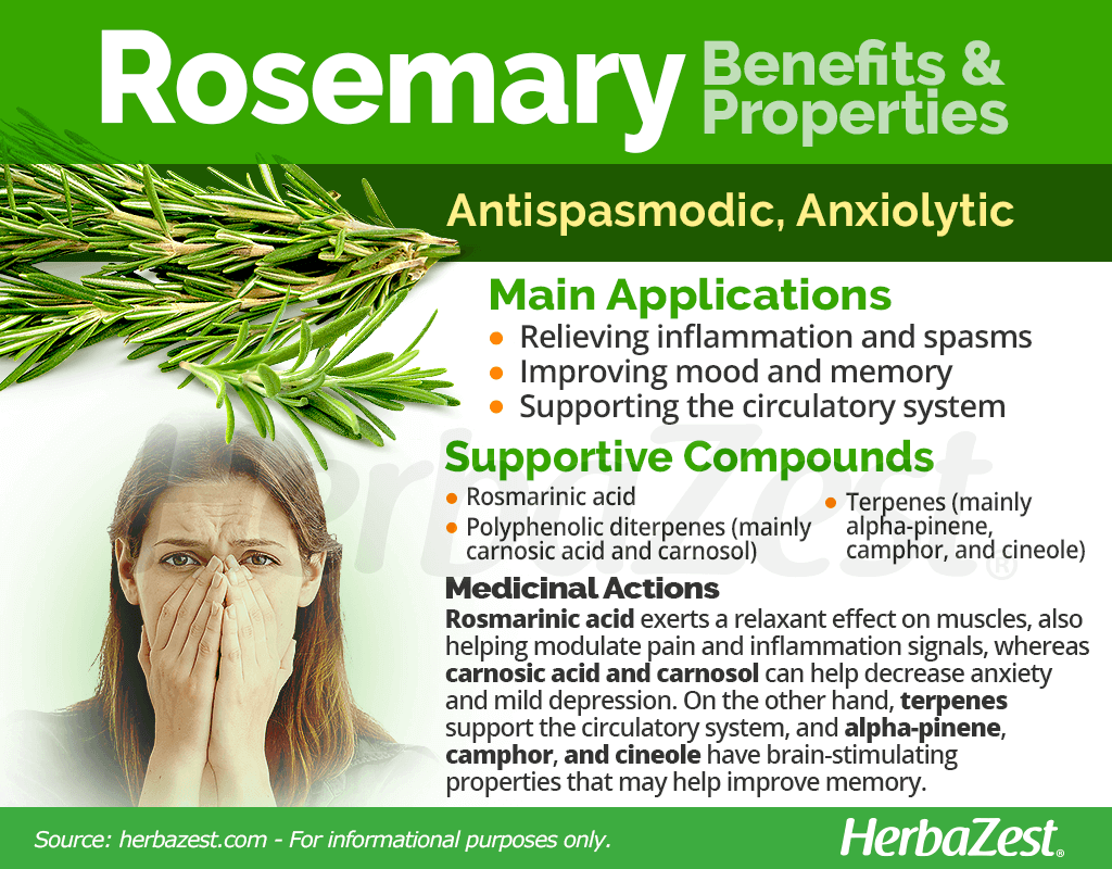Rosemary Benefits and Properties
