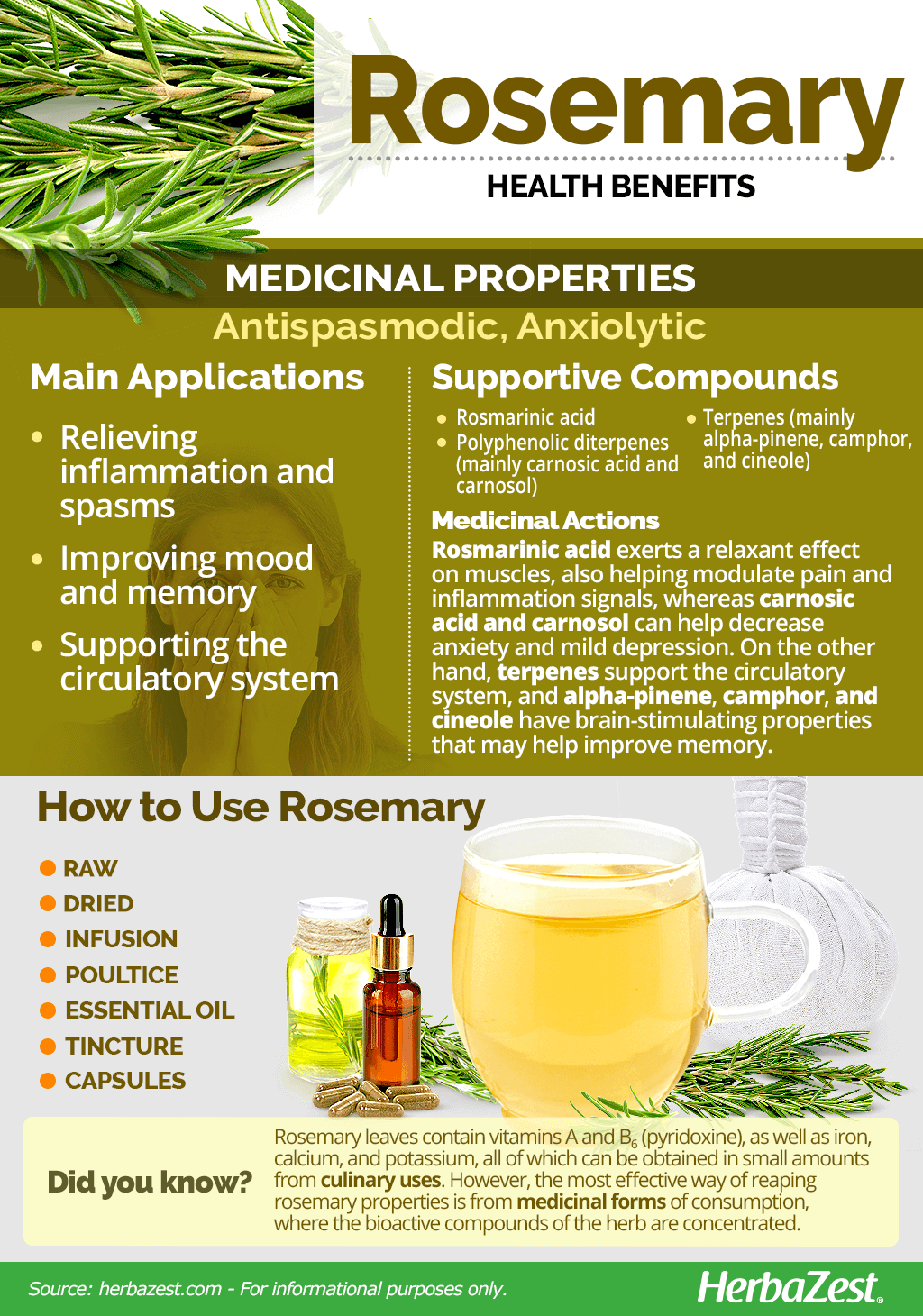 All About Rosemary