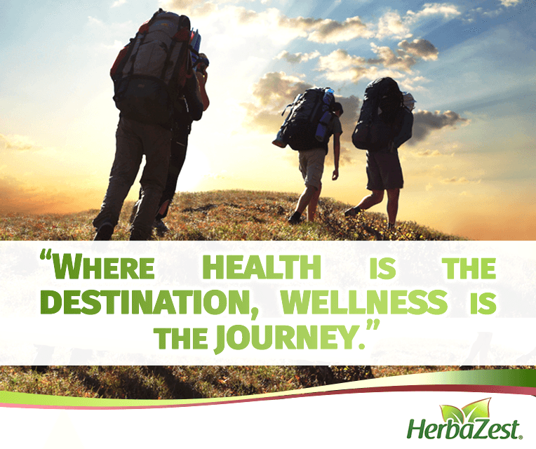 Quote: Wellness is a Journey