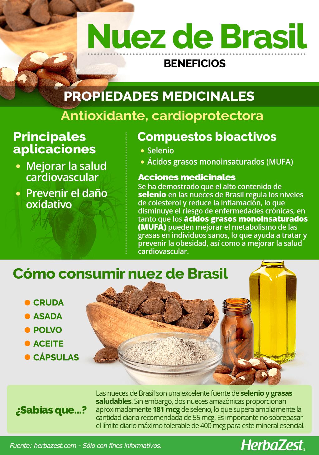 Beneficios de la nuez de Brasil