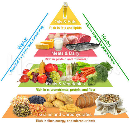 Balance The Food You Eat With Physical Activity