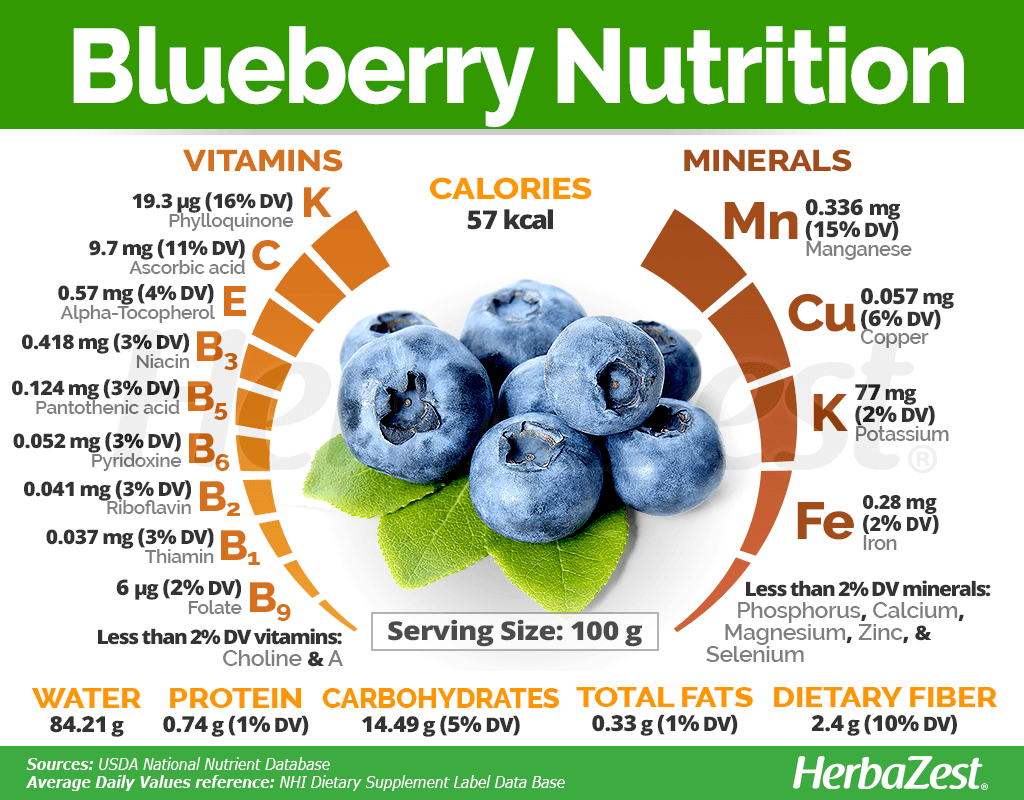 Blueberry Nutrition