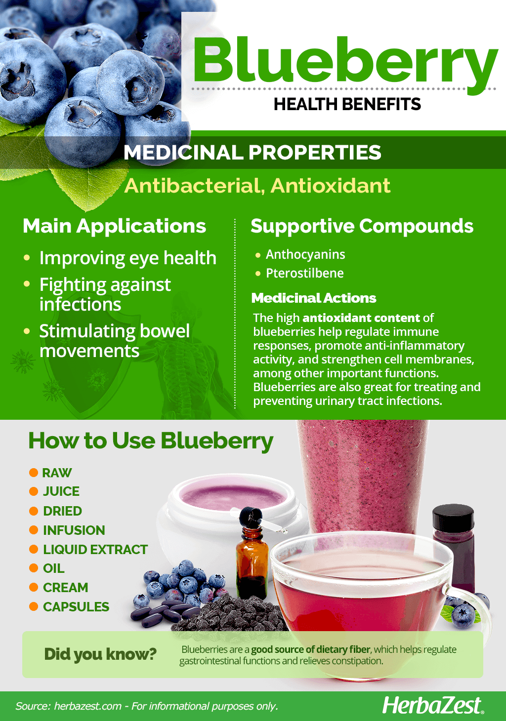 All About Blueberry