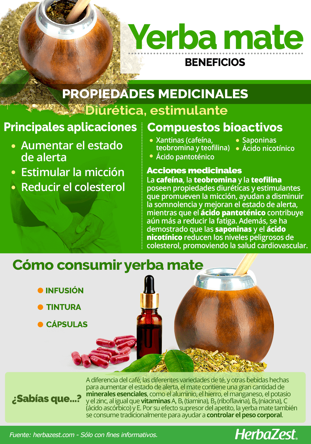 Beneficios de la yerba mate