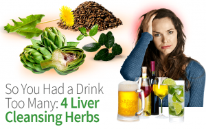 So You Had a Drink Too Many: 4 Liver Cleansing Herbs