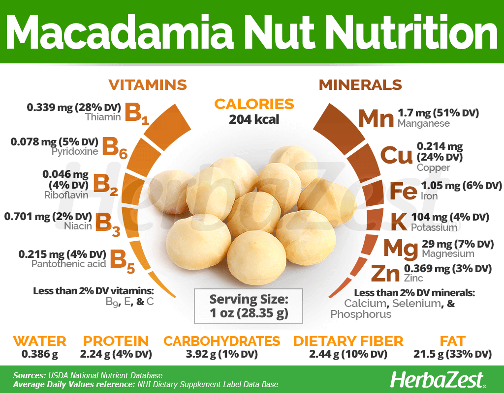 Macadamia Nuts Nutrition