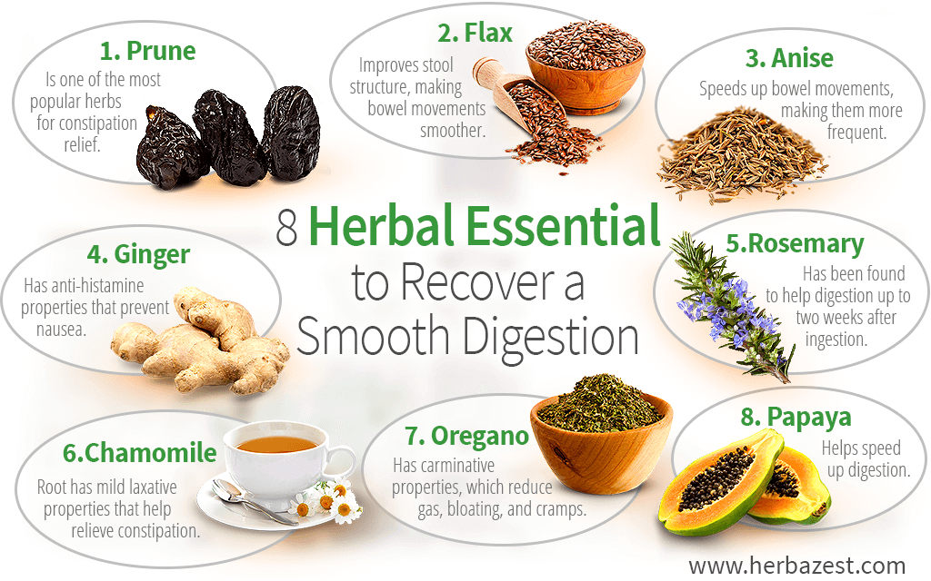 8 Herbal Essentials to Recover a Smooth Digestion