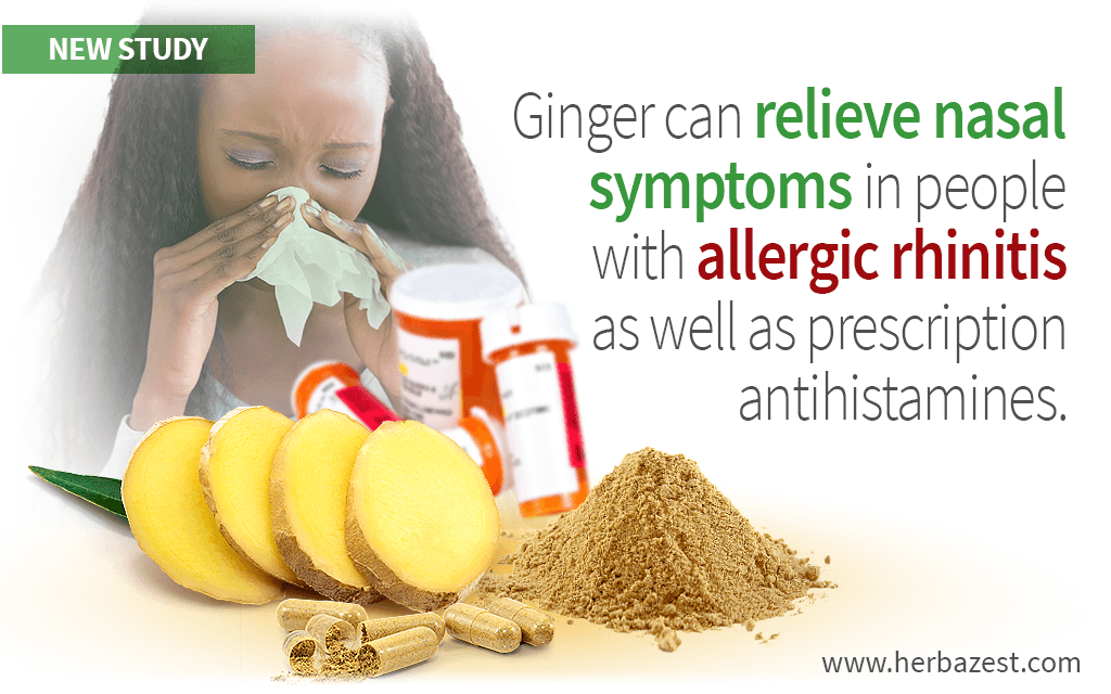 Ginger Proven as Effective for Allergic Rhinitis as Antihistamines