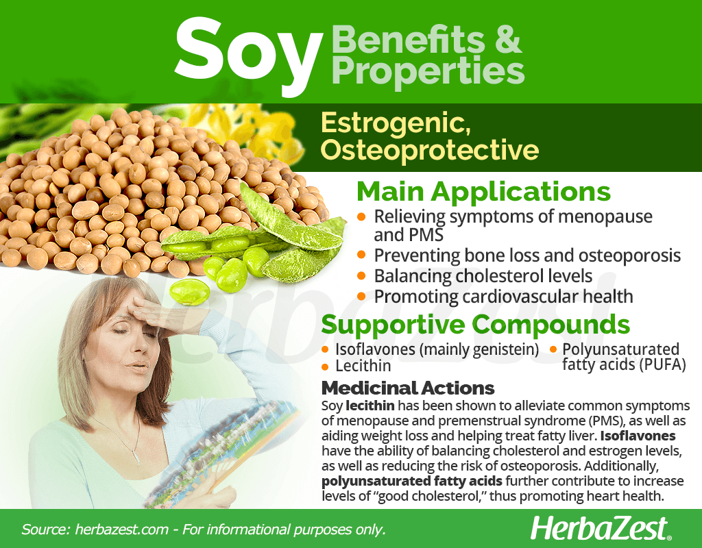 Soy Benefits and Properties