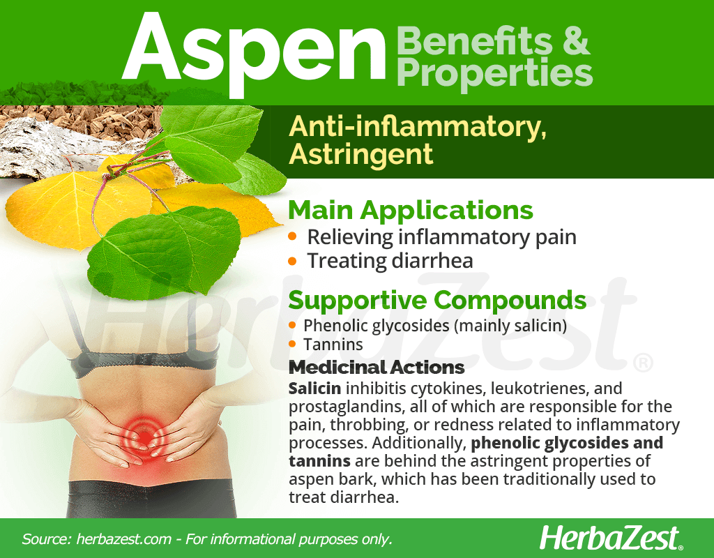 Aspen Benefits and Properties