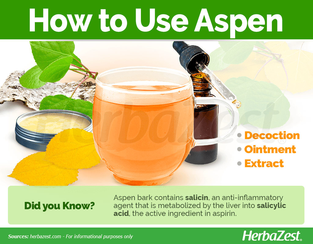How to Use Aspen