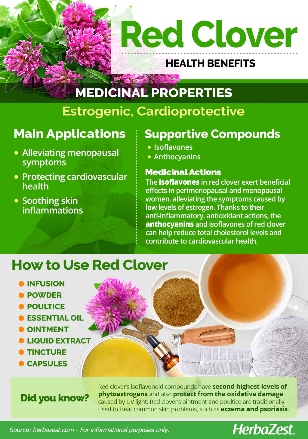 All About Red Clover