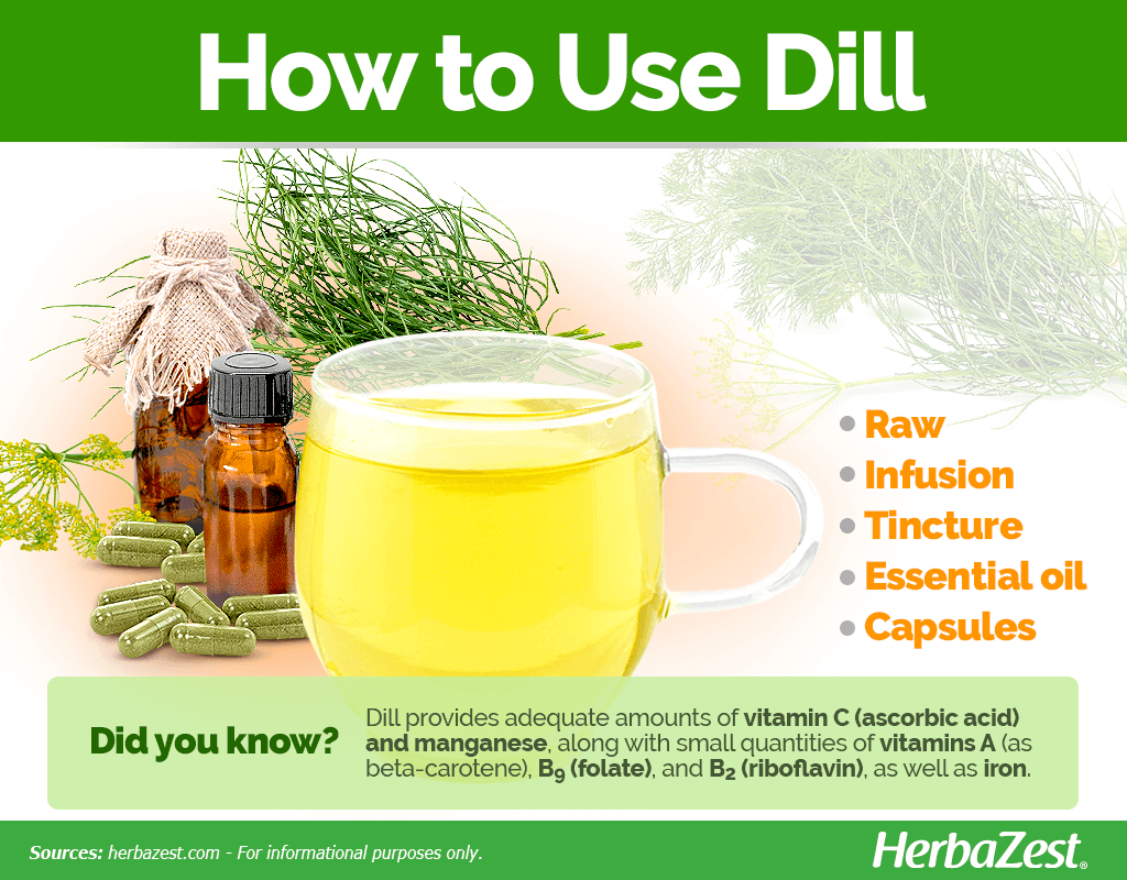 How to Use Dill