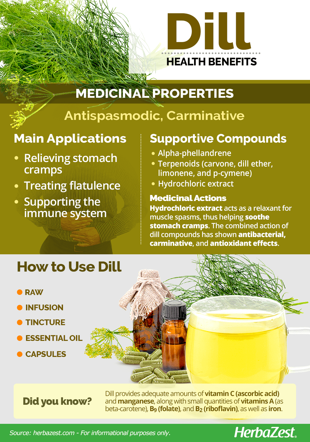 All About Dill