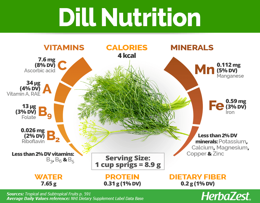 Dill Nutrition