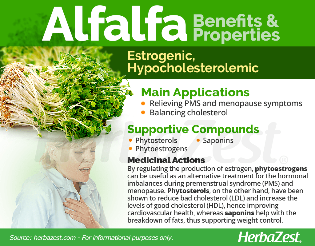Alfalfa Benefits and Properties