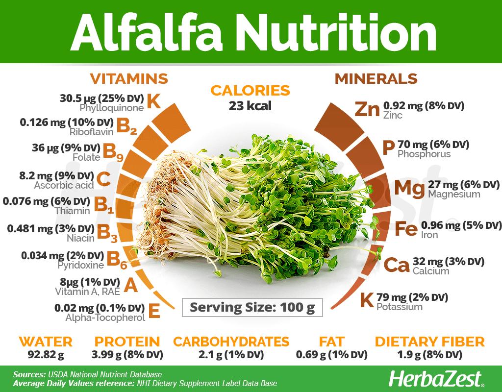 Alfalfa Nutrition