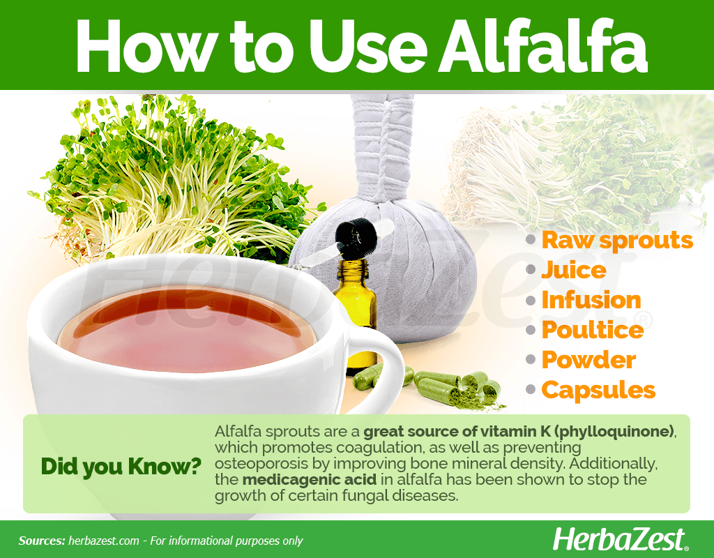 How to Use Alfalfa