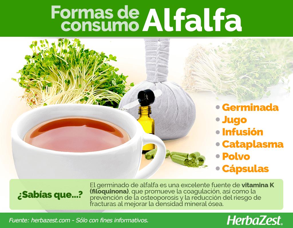 Cómo consumir alfalfa