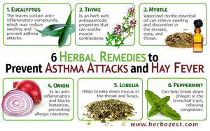 6 Herbal Remedies to Prevent Asthma Attacks and Hay Fever