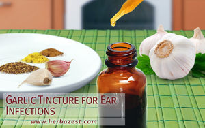 Garlic Tincture for Ear Infections