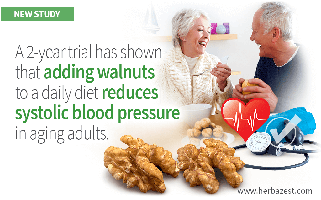 Eating Walnuts Helps Reduce Systolic Blood Pressure in Elderly Adults