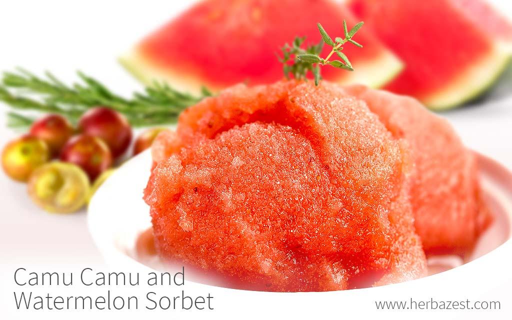 Camu Camu and Watermelon Sorbet