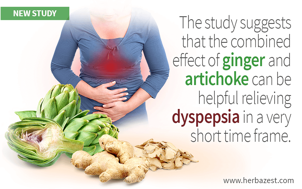 The study suggests that the combined effect of ginger and artichoke can be helpful relieving dyspepsia in a very short time frame.