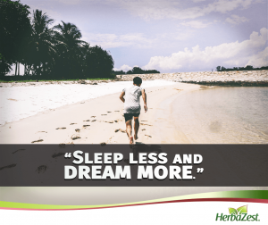 Quote: Sleep Less and Dream More