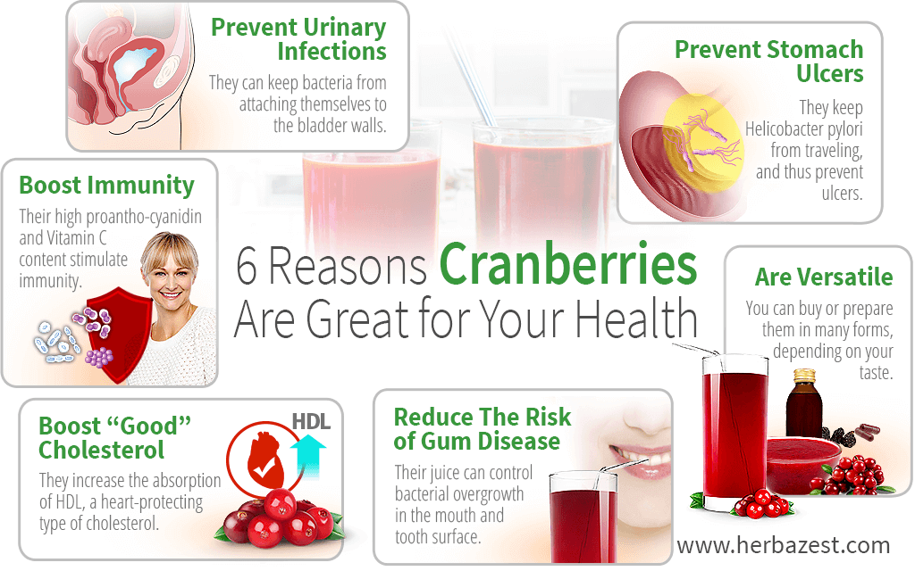 6 Reasons Cranberries Are Great for Your Health