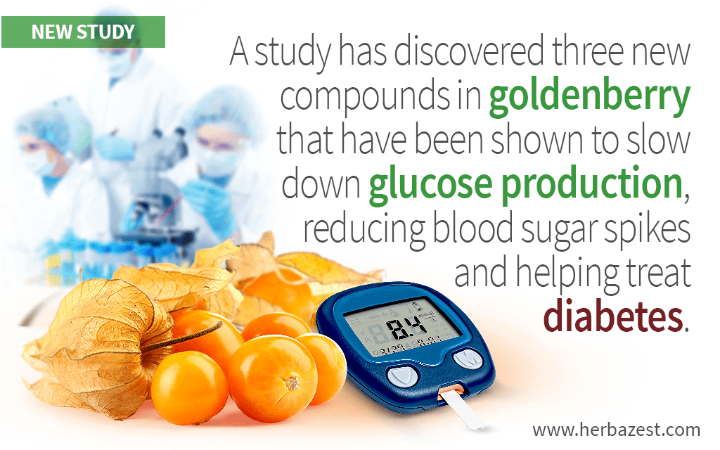 Goldenberry Antidiabetic Effects Explained by Promising Study