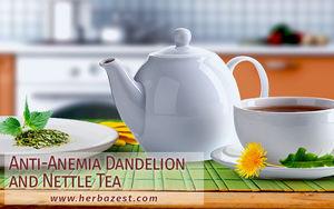 Anti-Anemia Dandelion and Nettle Tea