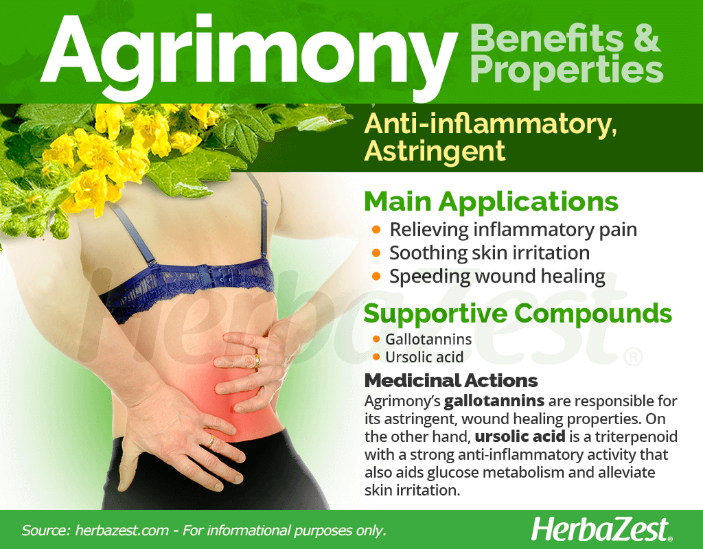 Agrimony Benefits and Properties