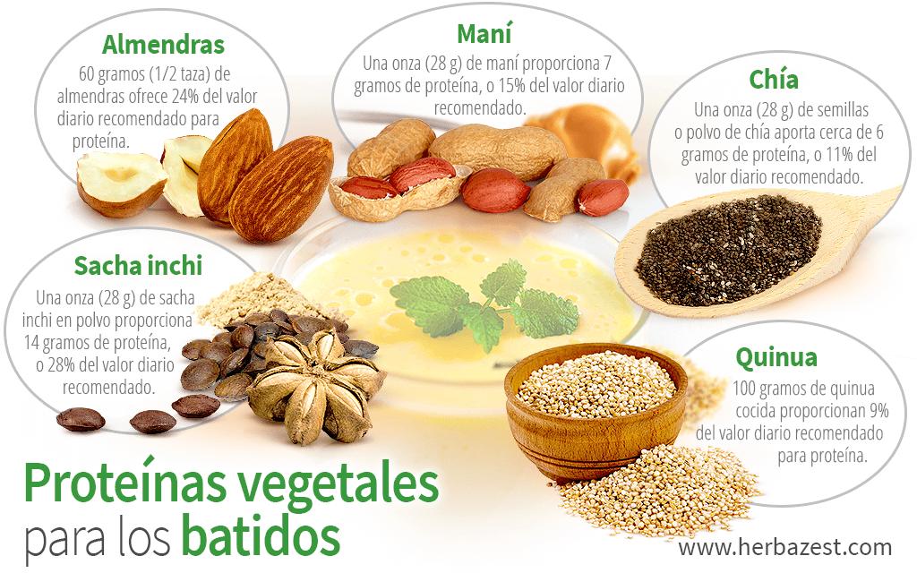 Proteínas vegetales para los batidos
