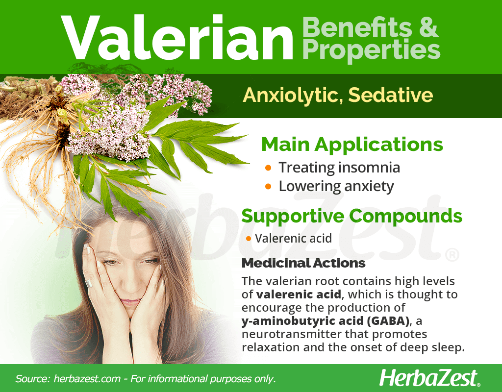Valerian Benefits and Properties