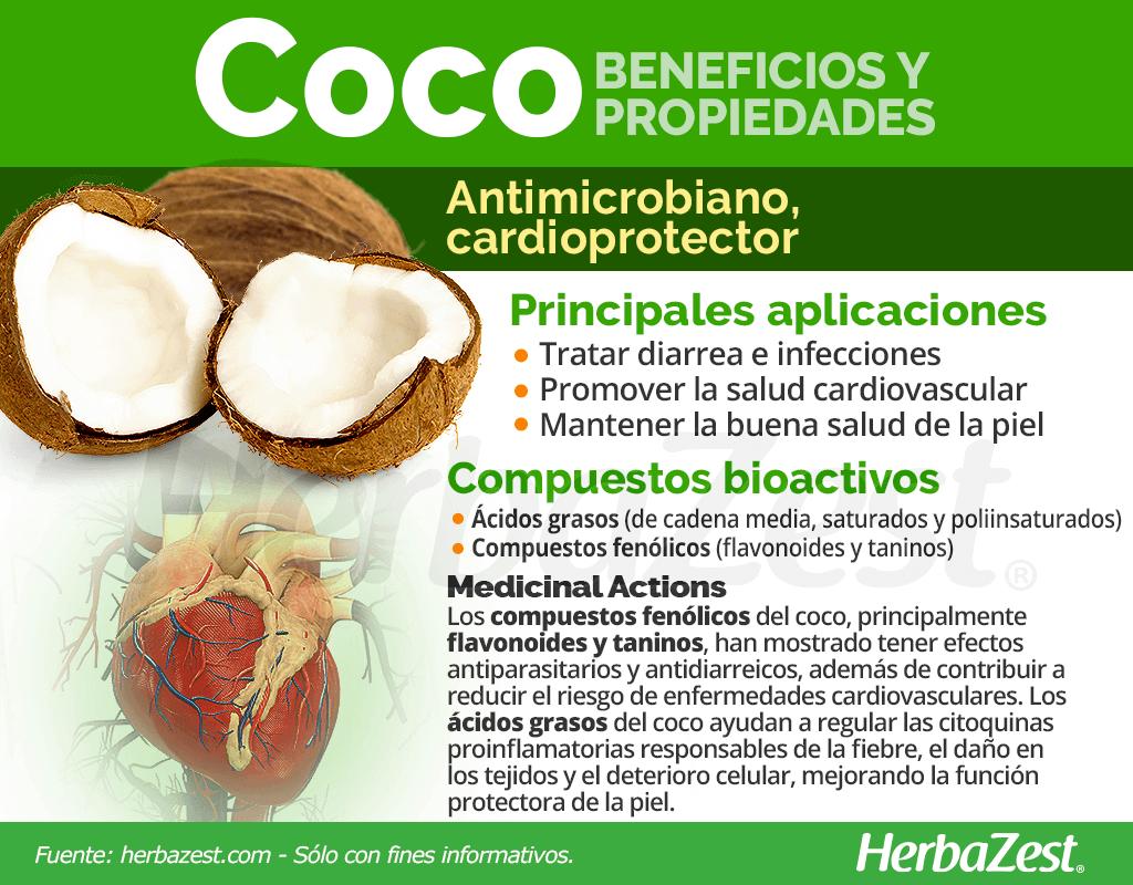 Bemeficios y propiedades del coco