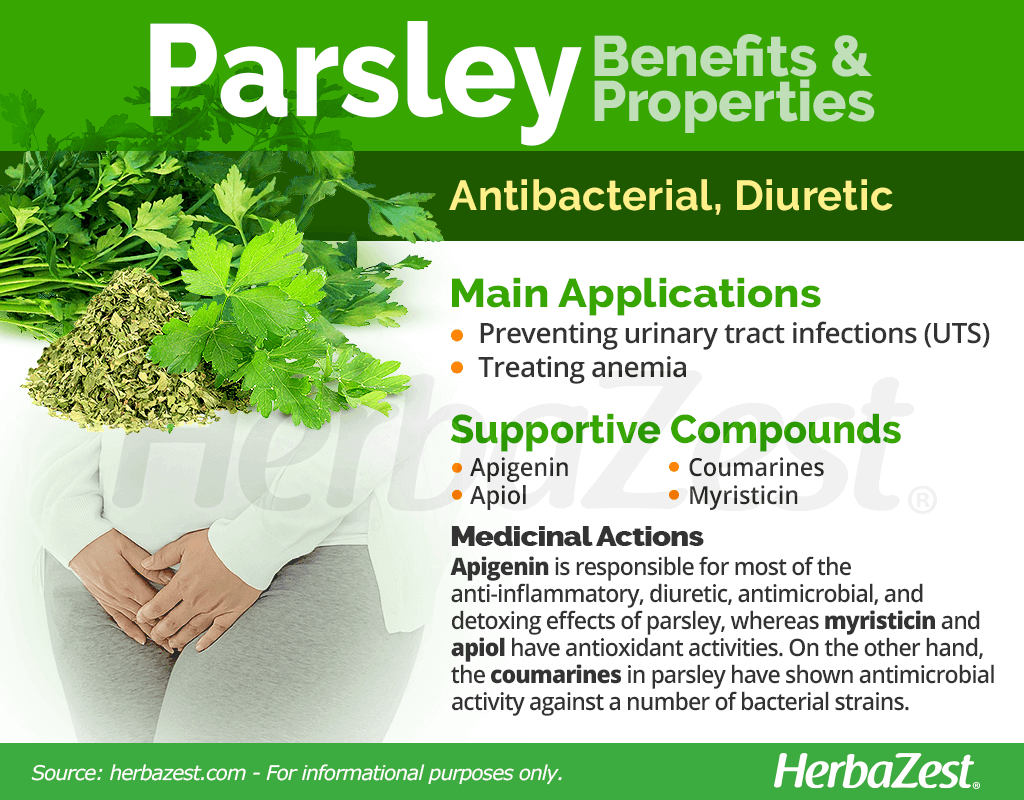 Parsley Benefits and Properties