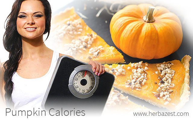 Pumpkin Calories
